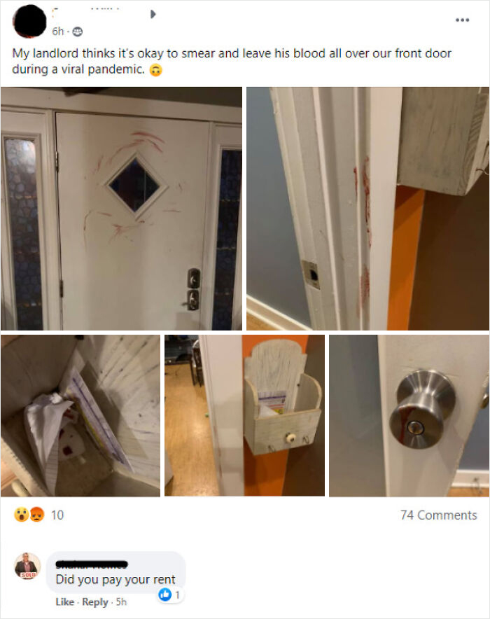 Joined A Facebook Group Looking To Rent A Place That Turned Out To Be 95% Landlords, Here's A Nice Comment One Left On A Post