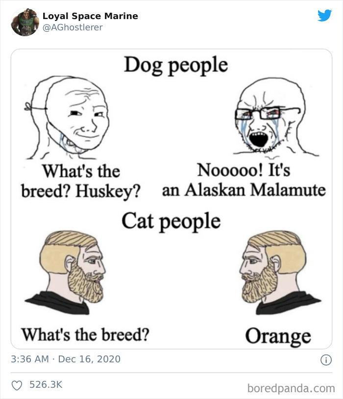 Cat-vs.-Dog-People-Tweets