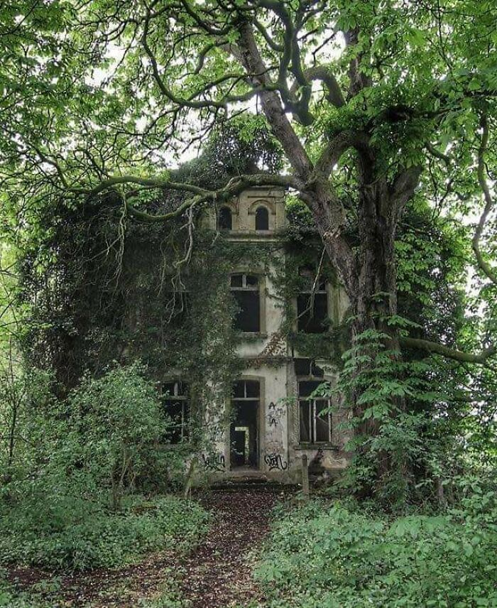 Ghostly Overgrown Villa In Germany