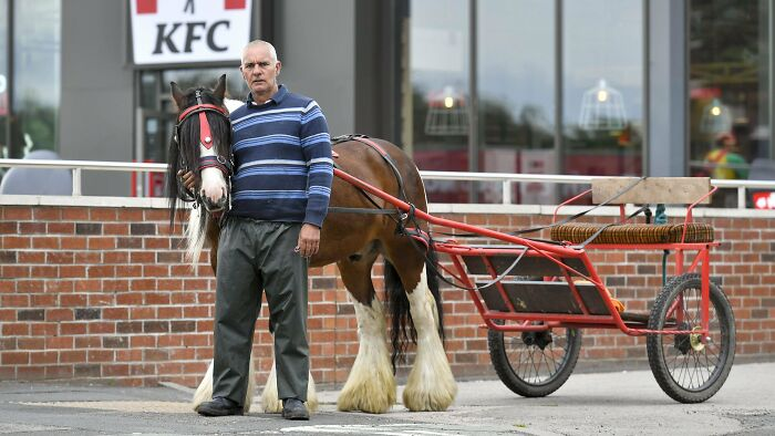 Til That A Man In Horse-Drawn Carriage Was Kicked Out Of KFC Drive-Through. He Then Went To A Mcdonalds And Was Served A Big Mac Without Anyone Questioning His Method Of Transport.