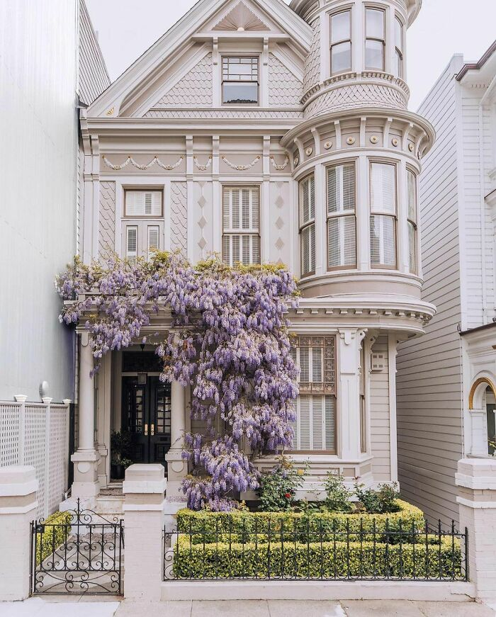 Wisteria Blossoms Surrounding The Entrance Of A Victorian Townhouse In San Francisco