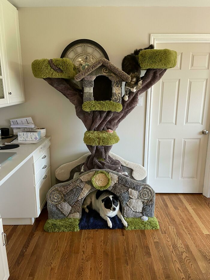 The Bridge, Another Cat Tree I Just Finished