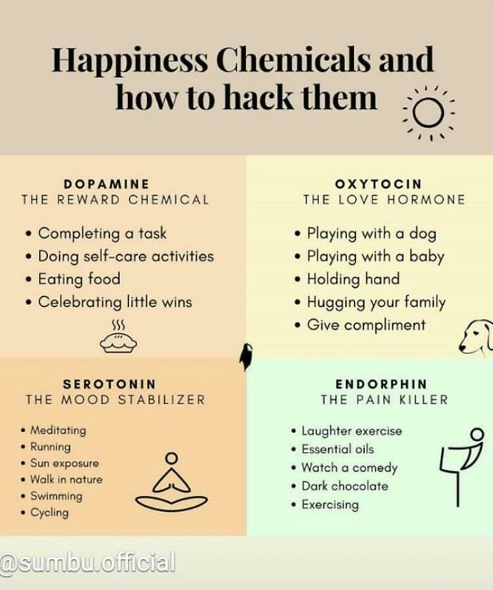 Activities That Make Your Brain Release Happy Chemicals