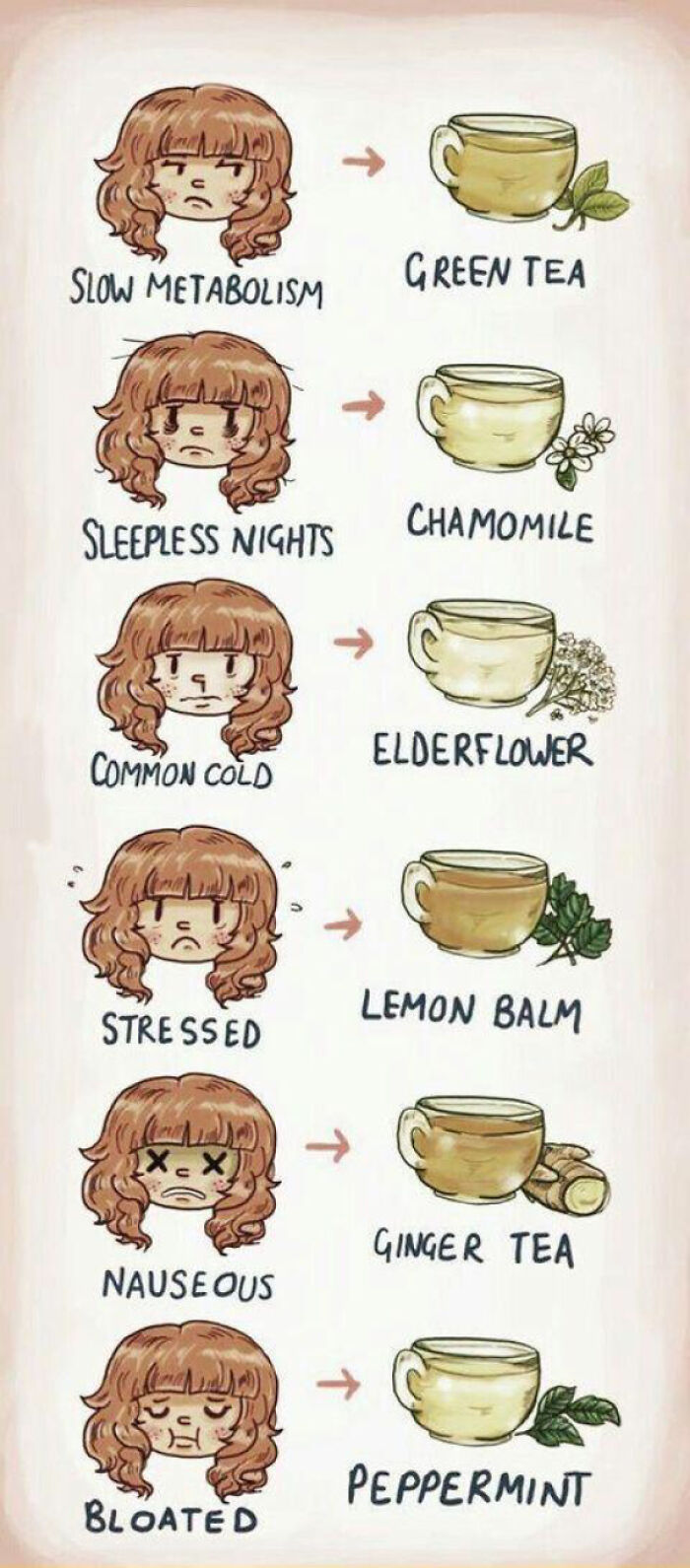 A Quick Guide To Tea!