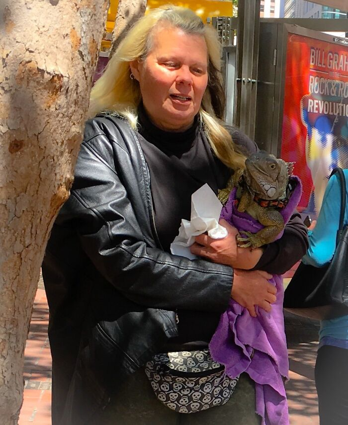 Just A Woman Cradling An Iguana On Market Street In San Francisco