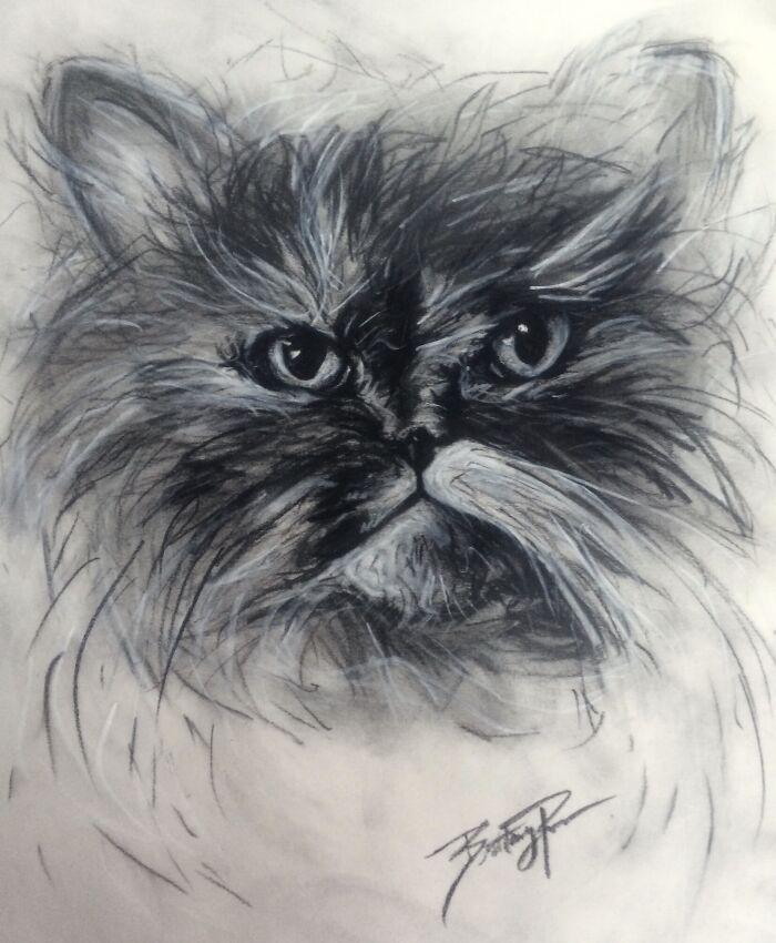 Miss Meow- Beautiful Little Kitty Soul
