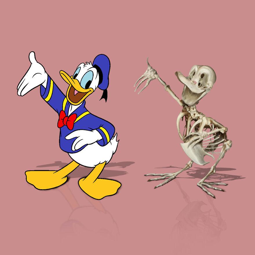 Donald, Donald Duck