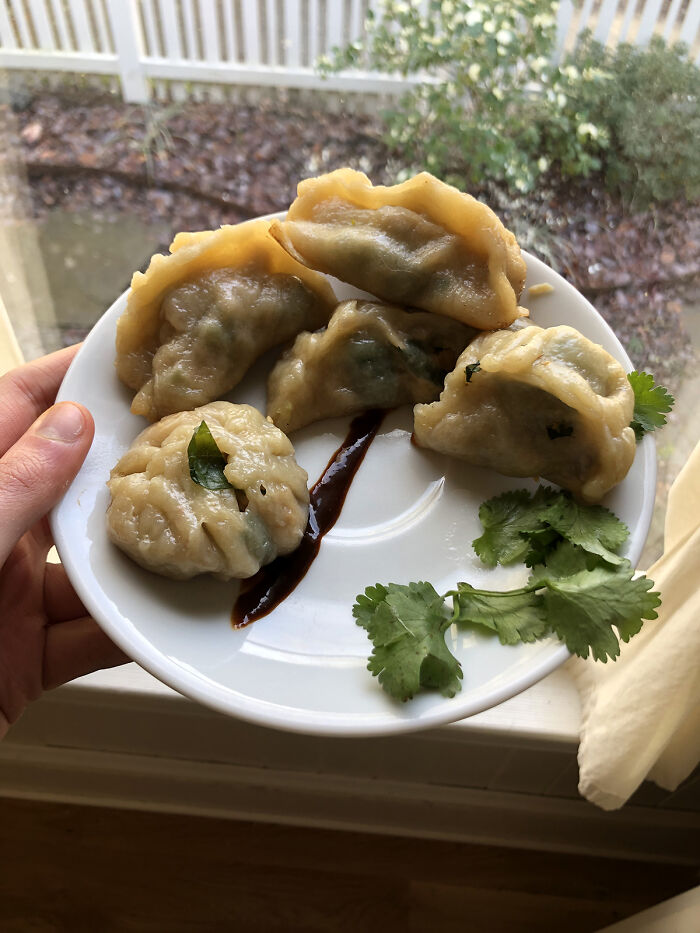 My First Attempt At Homemade (From Scratch) Potstickers, Filled With Cilantro, Cabbage, And Hoisin Glazed Pork!