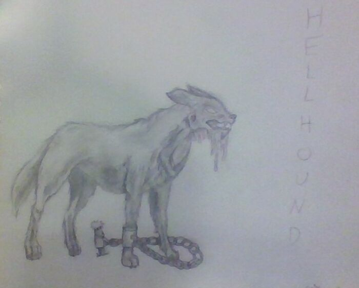 I Was Using A How To Draw Book And Made A Few Tweaks. Turned Out A Lot Scarier Than The One In The Book Haha, I Like It Though. It's A Hellhound.