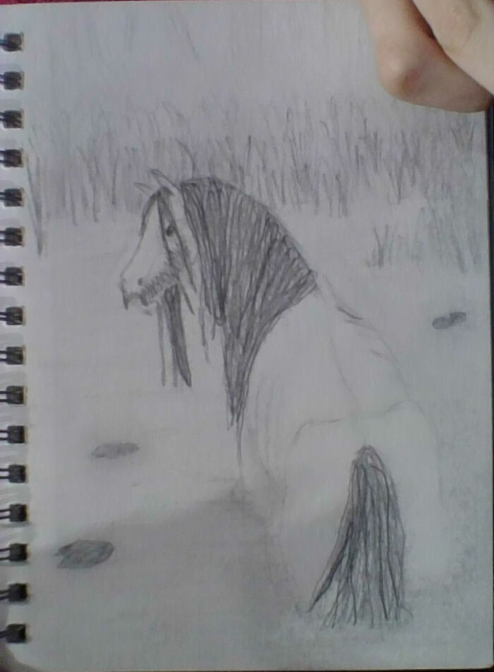 It's A Kelpie. Sorry About The Low Quality Picture By The Way. My Camera Sucks.