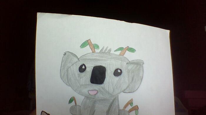I Drew This Cute Koala
