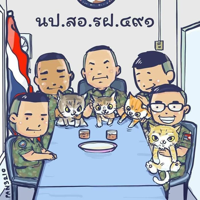 Thai Navy Officer Jumps Into Water And Swims To Rescue These Four Cats From A Rapidly Sinking Ship