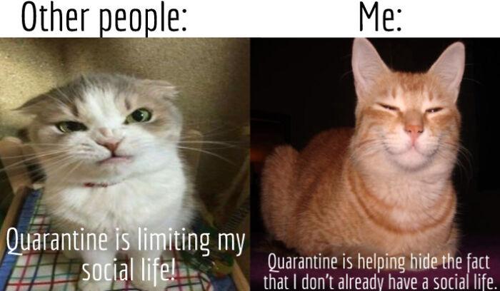 Quarantine Meme: