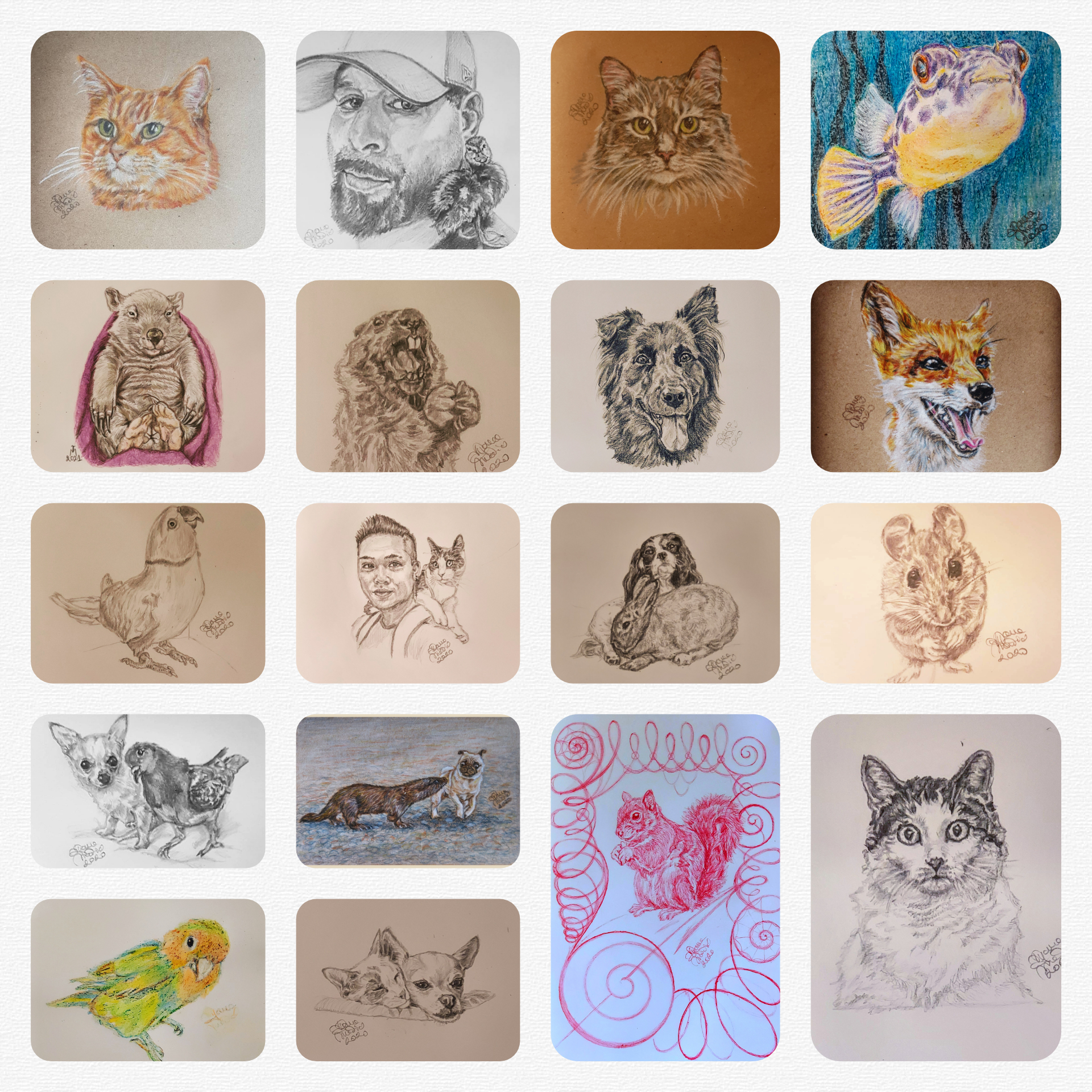 This Year's Batch Of Drawings Of Inspiring Animal Influencers