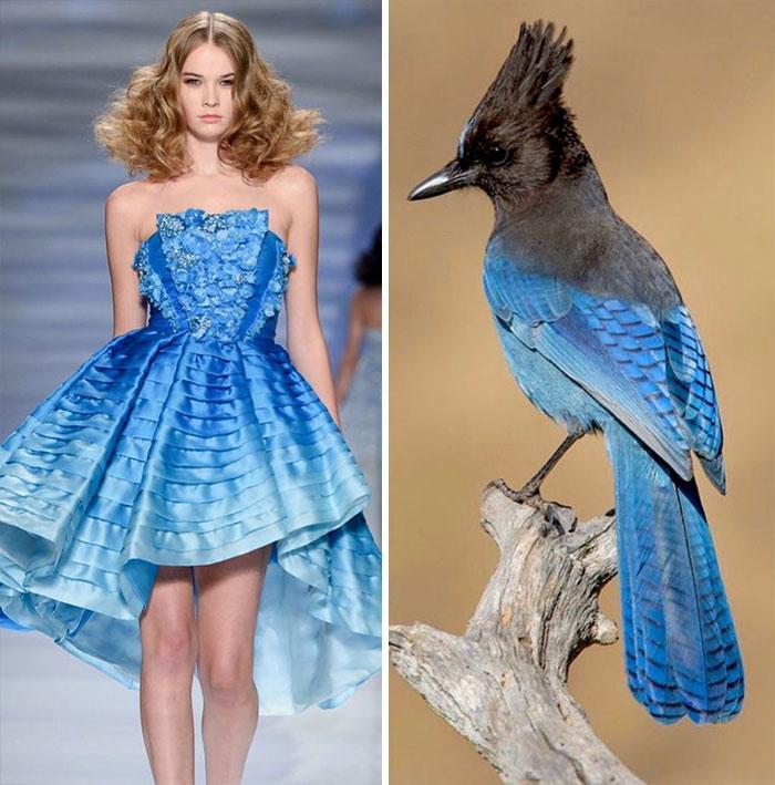 Fashion And Nature