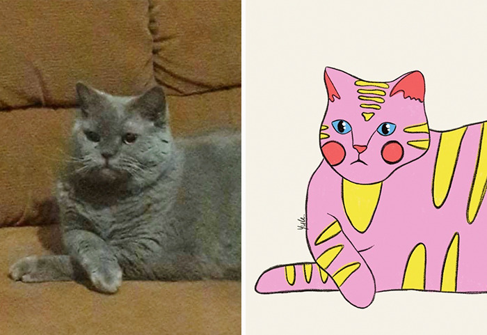 My Friend Took A Wholesome Pic Of Her Cat, And I Decided To Draw Her