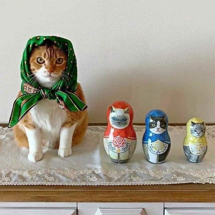 This Online Group Is Dedicated To Adorable Cat Babushkas (30 Pics)