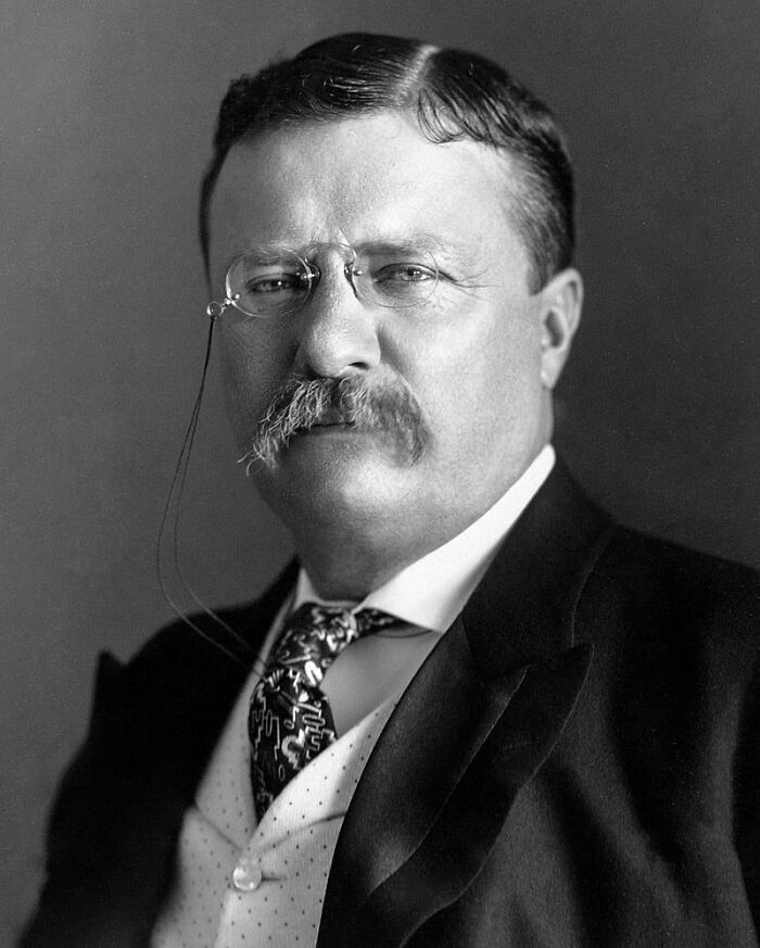 Til That In The Last Year Of His Presidency, Teddy Roosevelt Rode A Horse 100 Miles In One Day In Order To Prove That His New Military Physical Standards (100 Miles In Three Days) Were Not Unreasonable