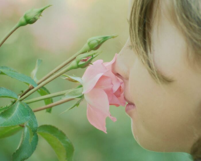 Til That A Smell Can Recall Emotional Memories Better Than Any Other Sense. A Sense Of Smell Is Also Linked To Overall Psychological Well-Being.