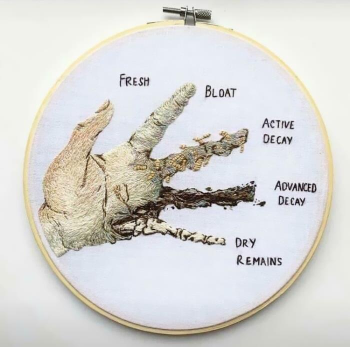 How Human Flesh Decomposes