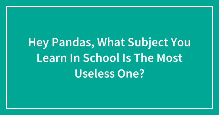 Hey Pandas, What Subject You Learn In School Is The Most Useless One?
