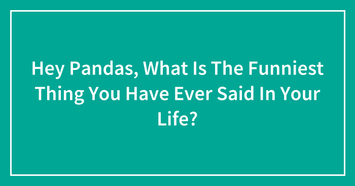 Hey Pandas, What Is The Funniest Thing You Have Ever Said In Your Life?