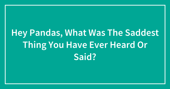 Hey Pandas, What Was The Saddest Thing You Have Ever Heard Or Said?