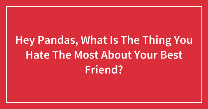 Hey Pandas, What Is The Thing You Hate The Most About Your Best Friend?