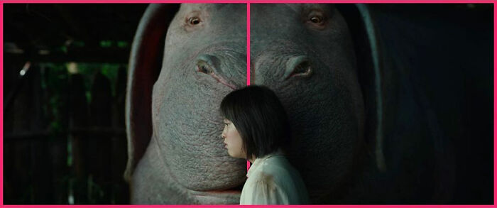 Okja (2017)⠀
