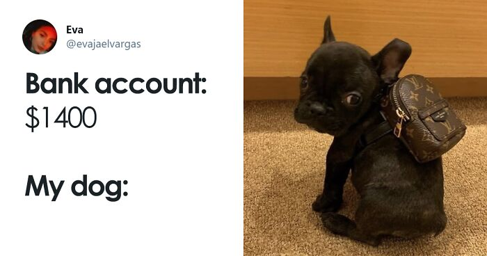 30 Of The Most Sarcastic And Funny Tweets That Show How People Are Gonna Spend All That Stimulus Check Money