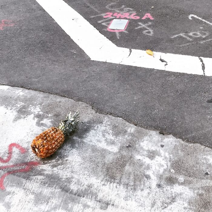 Mysterious Street Pineapple