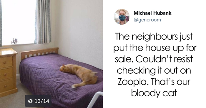 "40 ""My Cat, Not My Home"" And ""My Home, Not My Cat"" Tweets About Cats That Do What They Want"