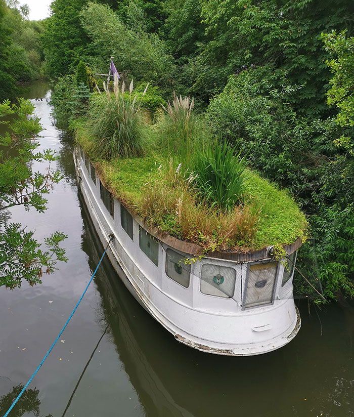 "This Overgrown Boat We Saw. Nature Ship ""Ms Heimliche Liebe"""