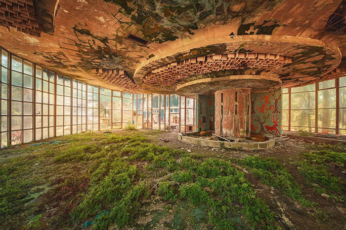Abandoned Place Reclaimed By Nature