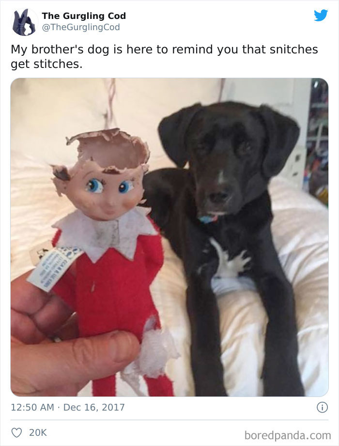 This Guy vs. An Elf