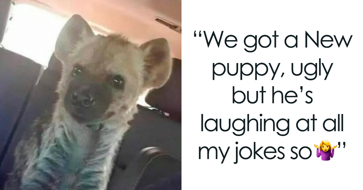 58 Seemingly Innocent Posts That Took A Twisted Turn