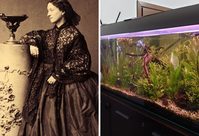 Jeanne Villepreux-Power Invented The Aquarium