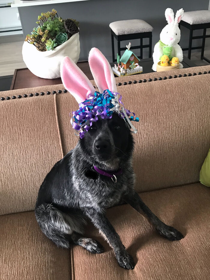Her First Easter