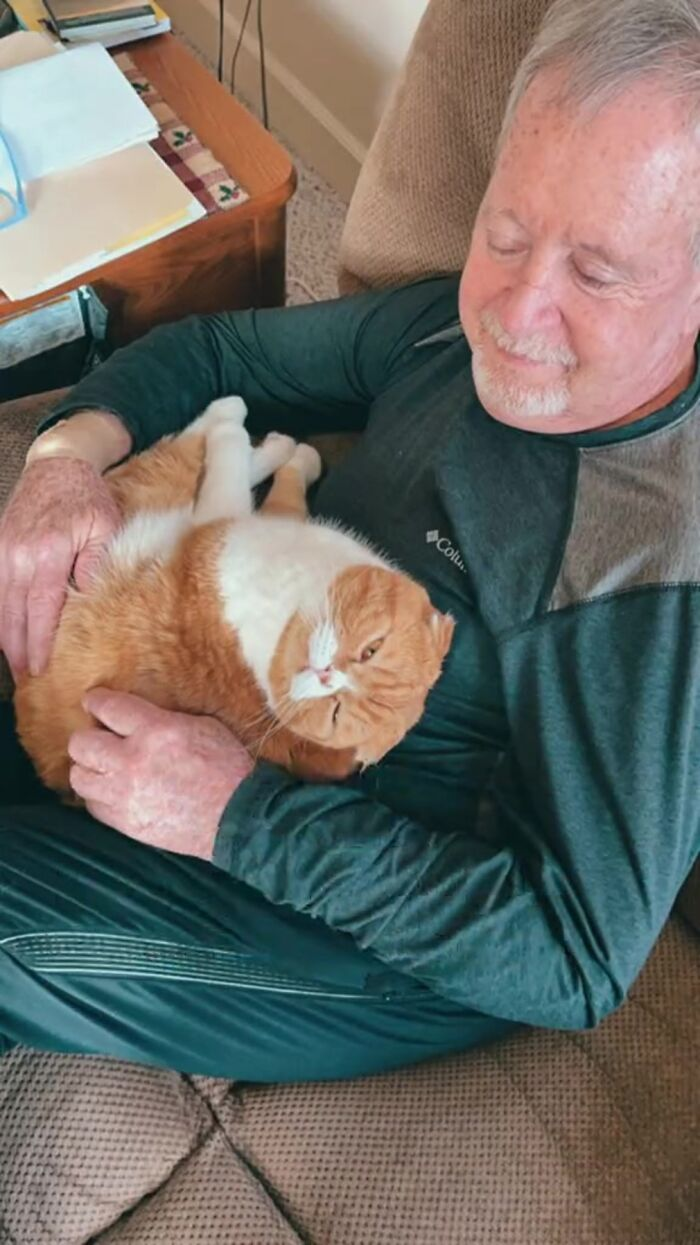 Cat Refuses To Leave The Side Of His Grandpa Who's Fighting Cancer