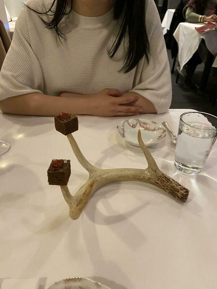 Cubitos de venado en la cornamenta de un ciervo
