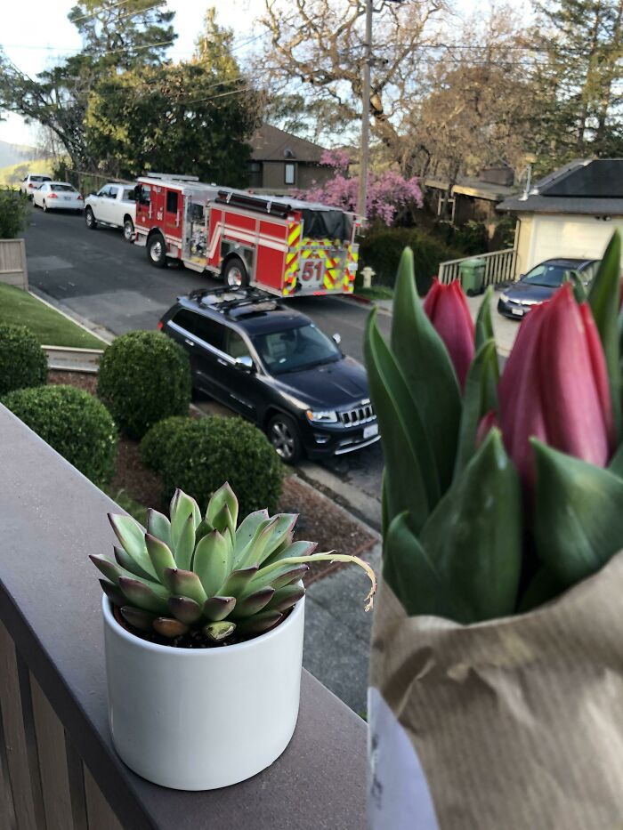 The Firefighters That Helped Deliver Our Baby In Our Driveway Last Week Just Dropped Off Flowers