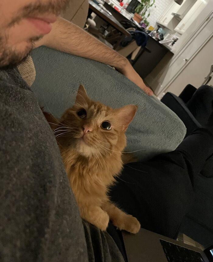 Hopper Loves His Dad
