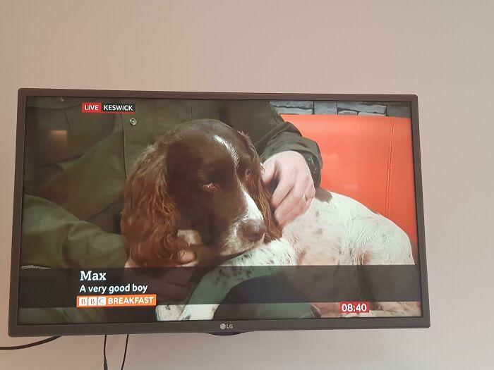 Its Content Like This That I Tune Into Bbc Breakfast For