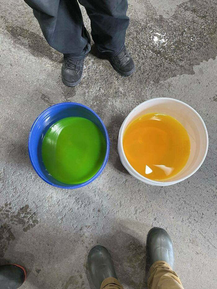 The Same Color Liquid In Different Colored Buckets Makes For An Interesting Comparison/Contrast.