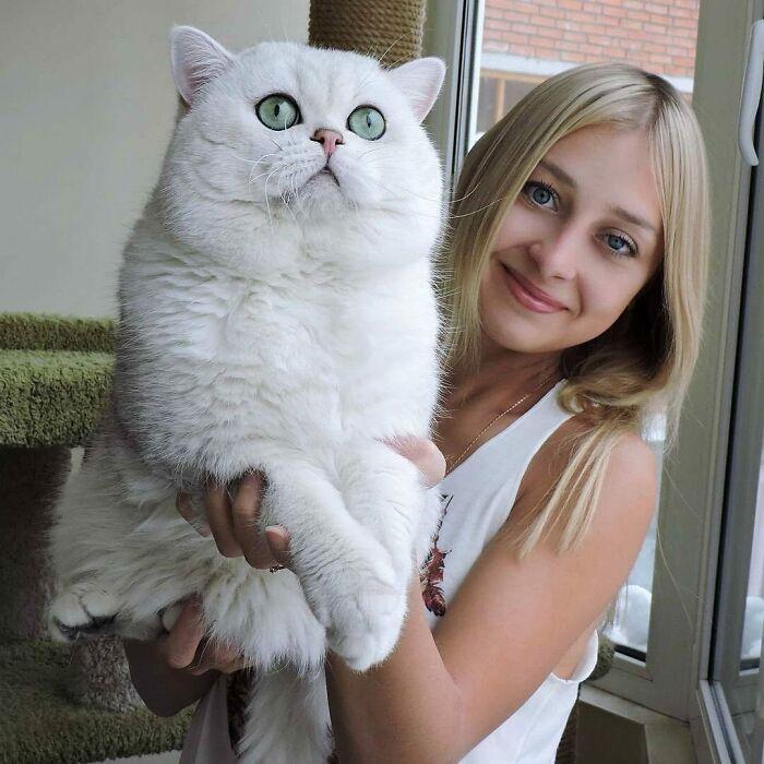 This Cat Is Huge!!!