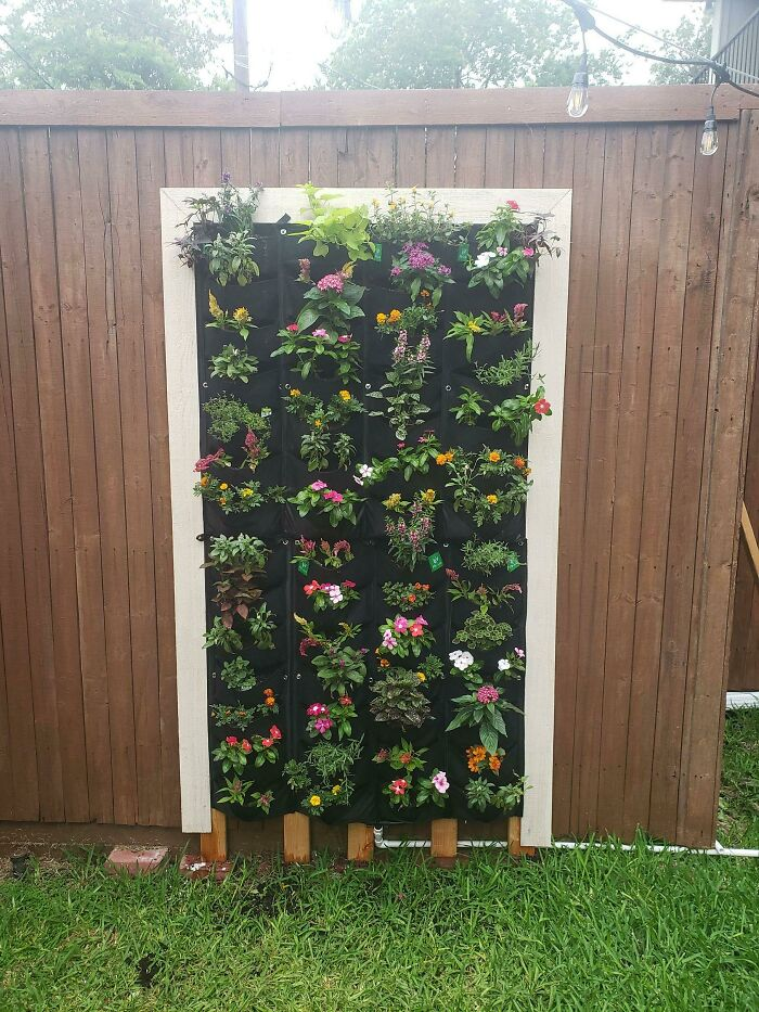 First Vertical Garden. What Do You Think?