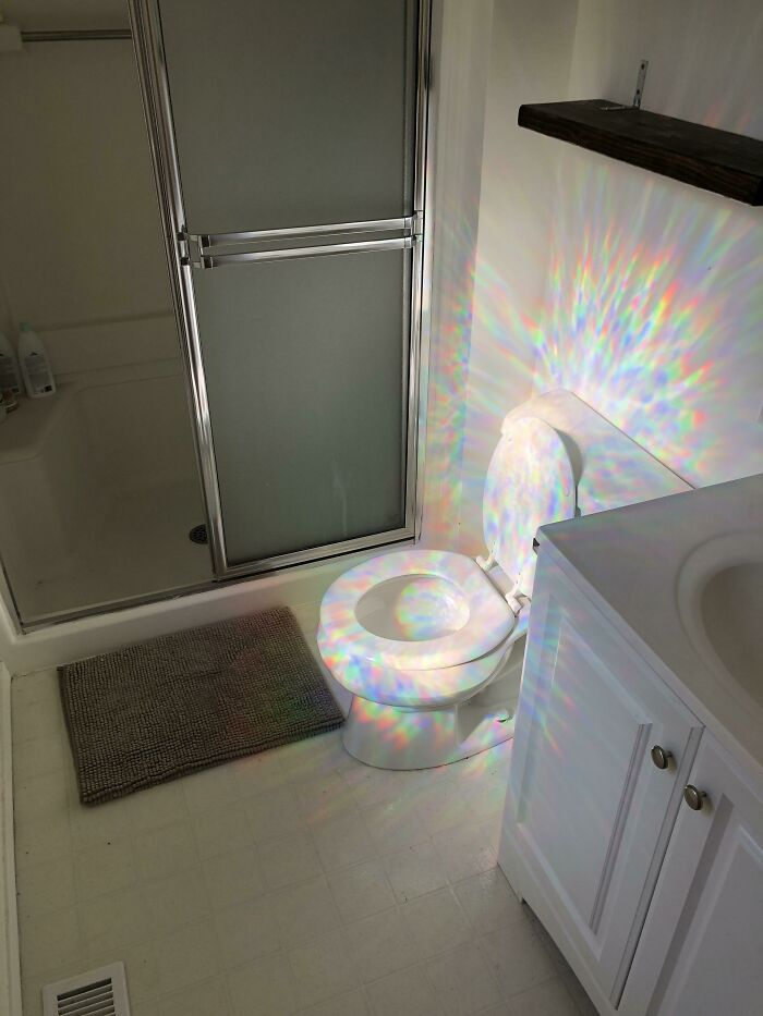 The Reflection From My Window Decal Makes My Toilet Look Like A Quest Item In A Video Game