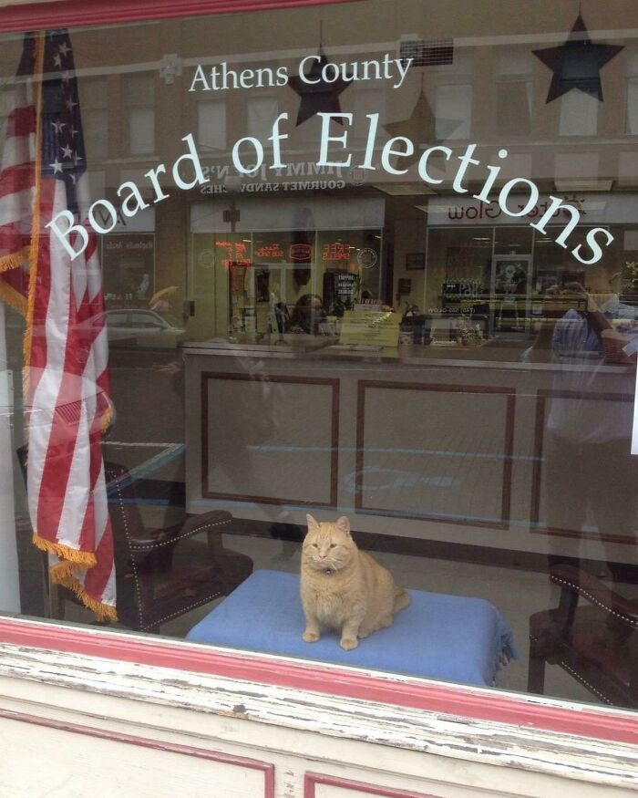 The Elections Are In Good Hands