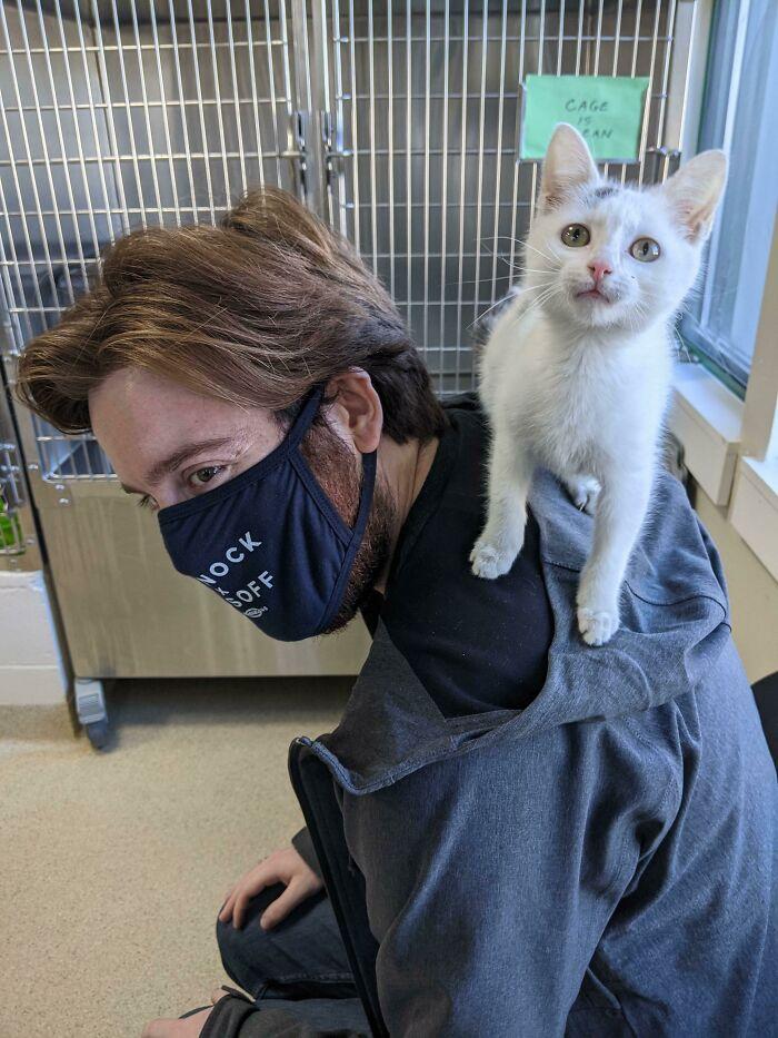 No pensaba adoptar un gatito hasta que se subió a mi espalda. Libby es toda mía ahora
