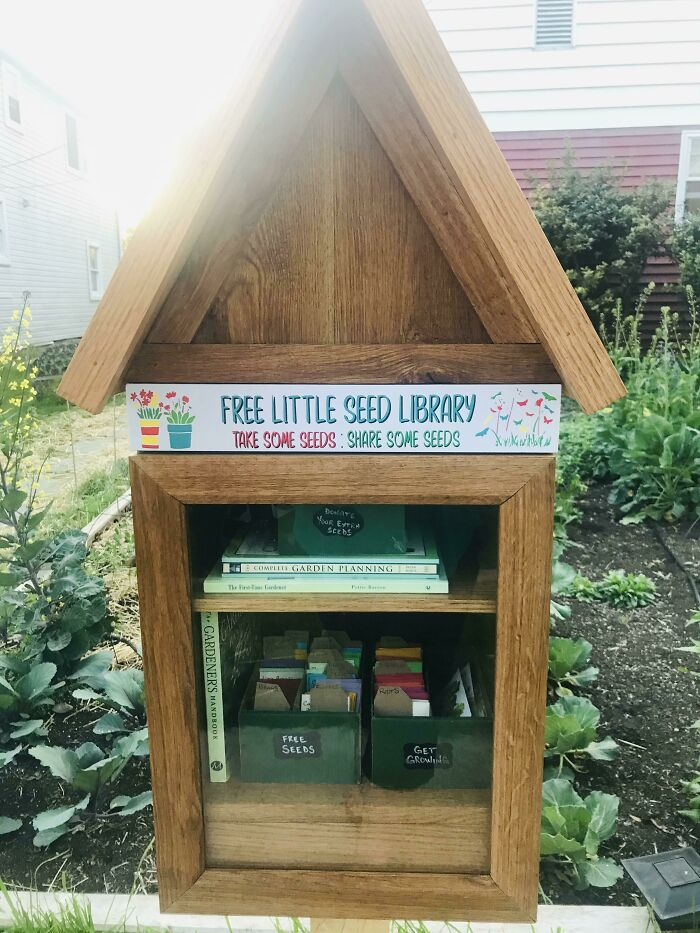 Last Spring I Converted Our Front Lawn To A Vegetable Garden. Today We Opened A Little Community Seed Library To Encourage Neighbors To Get Growing Too